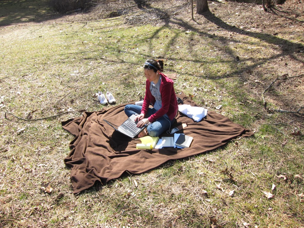 """""""A Tiger in the Kitchen,"""" a work in progress on the meadow of Yaddo, March 2010."""